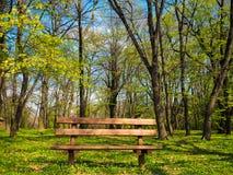 在森林旁边的美丽的长凳 免版税库存图片