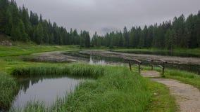 在森林池塘的多云晚上 时间间隔 影视素材