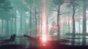 在森林沼泽的神仙的萤火虫光在有雾的黄昏4K 皇族释放例证
