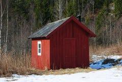 在森林流洒的红色 免版税库存照片