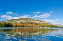 在森林湖上的日出 库存照片