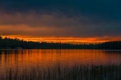 在森林湖上的日落 免版税库存照片