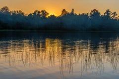 在森林湖上的日落 库存照片