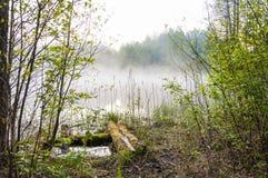 在森林湖和古老传统村庄致冷机发明的有雾的日出 库存图片