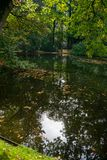 在森林湖的小阳春 免版税图库摄影