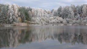 在森林湖的早晨霜 普斯克夫地区,俄罗斯 股票视频