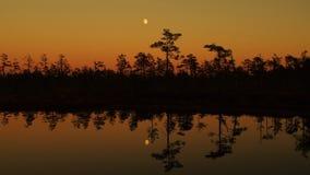 在森林湖的月亮上升 免版税库存照片