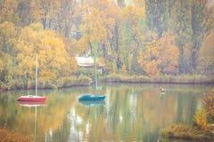 在森林湖的有雾的秋天早晨 免版税库存图片