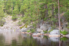 在森林湖的海滩有岩石的 免版税库存照片