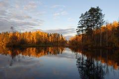 在森林湖的秋天 免版税库存图片