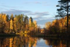 在森林湖的秋天 免版税库存照片