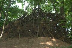 在森林演奏小屋由小心地被安排的棍子和捆绑草做成 免版税库存图片