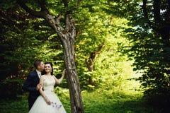 在森林爱两的婚礼夫妇 库存图片