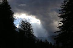 在森林的云彩 免版税库存照片