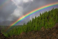在森林的彩虹在雨期间的山的 库存图片
