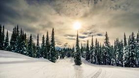 在森林的日落在太阳的滑雪小山的锐化村庄 免版税库存照片