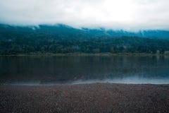 在森林的神秘的雾在湖后 免版税库存图片