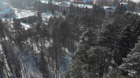 在森林的飞行在河附近在冬天 股票录像