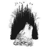 在森林背景的狼剪影 库存图片