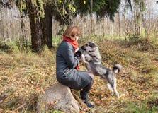 在森林走与一条狗的妇女在秋天 库存图片
