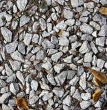 在森林路径的石渣 免版税库存照片