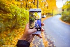 在森林里供以人员拍黄色叶子的照片在与电话的秋天 免版税库存照片