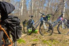 在森林里停放的自行车 免版税库存照片