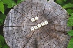 在森林里措辞是愉快的在一个树桩的木字母表小珠 图库摄影