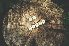 在森林里措辞是愉快的树桩表面上的木小珠 免版税库存照片