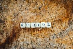 在森林里措辞木小珠学校树桩表面上的 免版税库存图片