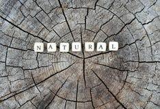 在森林里措辞自然在一个树桩的字母表小珠 免版税库存图片