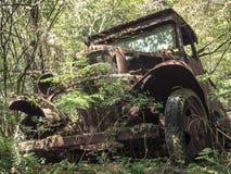 在森林里放弃的老生锈的葡萄酒卡车 库存图片