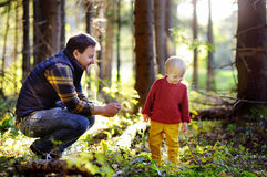 在森林里生和他的走在远足的活动期间的小儿子在日落 库存图片