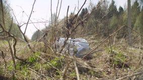 在森林里的垃圾袋 影视素材