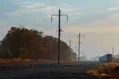 在森林里铺铁路在一有雾的秋天天 免版税库存图片