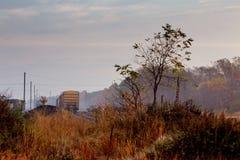 在森林里铺铁路在一有雾的秋天天 库存图片