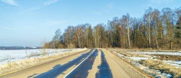 在森林附近柏油路在早期的春天 库存照片
