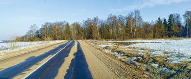 在森林附近柏油路在早期的春天 免版税库存照片