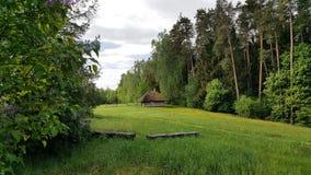 在森林附近的一个小古老小屋 免版税库存照片