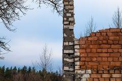 在森林附近的粉碎的墙壁 免版税库存照片