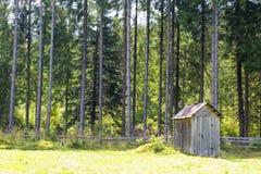 在森林附近的餐具室 免版税库存照片