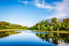 在森林附近的Summer湖 免版税库存图片