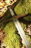 在森林青苔的剑 免版税库存图片