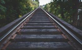 在森林风景的火车轨道 库存照片