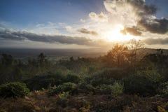 在森林风景的美好的秋天秋天日落与喜怒无常的博士 免版税库存图片