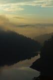 在森林风景的Dwan 免版税库存照片