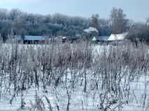 在森林,多雪的冬天边缘的土气房子 库存照片