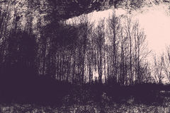 在森林幻想艺术处理的冬天col的照片 库存照片