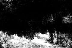 在森林幻想艺术处理的冬天col的照片 库存图片