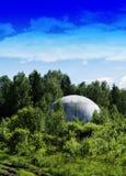 在森林backg的垂直的生动的地球外飞碟球形茶碟 免版税库存照片